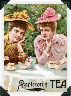 Appleton's Tea