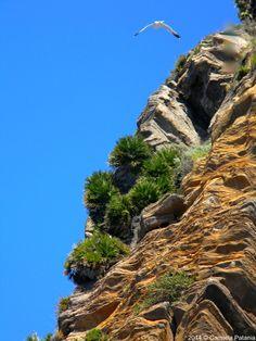 #Panarea - Aeolian Island -Sicily