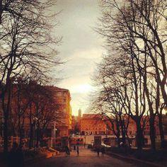 Uno scatto dalla Montagnola...(foto di Emanuela Recchioni)