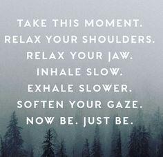 breathe.                                                                                                                                                                                 More