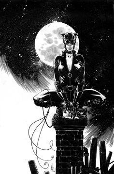 Catwoman - Zach Howard