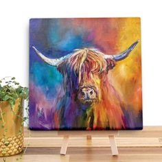 Harris The Highlander Canvas Mini by Sue Gardner Dorm Paintings, Cow Paintings On Canvas, Animal Paintings, Canvas Art, Highland Cow Painting, Highland Cow Canvas, Scottish Cow, Cow Art, Summer Art