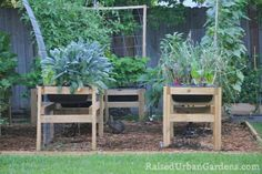 the benefits of raised urban gardening, gardening, homesteading, urban living, 6 Critters can t get to your garden to bother it No rabbits gophers skunks possums or critters
