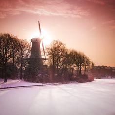 #landscape #netherlands #holland #sunset #tree #mill #molen #snow #winter #follow