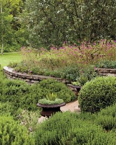 Rethink the Lawn When a couple wanted to reduce the water consumption in their Southern Califoria garden, they turned to landscape designer Judy M. Horton. Here she shares the best practices for creating a beautiful, water-wise garden, wherever you live. In its need for water, a lawn is similar to a gas-guzzling car. Horton removed most of it here, leaving only a portion in the backyard. In its place she expanded the planting beds, and she gave the remaining lawn a new shape by adding trees…
