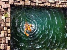 Water & Wave #Tutorial