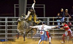 Tejas Rodeo in Bulverde, TX. Best place to hang with good friends.