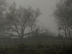 La neblina nos envuelve limitando nuestra visión. Es una sombría fiesta de nubes.