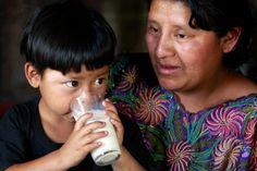 El Programa de Abasto Social de Leche Liconsa contribuye a mejorar la nutrición de 6 millones de mexicanos