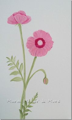 Poppies!  Love them and here is how to paint them for when I finally get around to painting my rain barrel