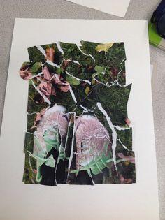 Final classwork photo montage