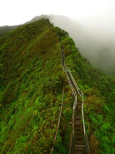 Haiku Stairs, Hawaii - this looks hard but I bet the view is amazing!