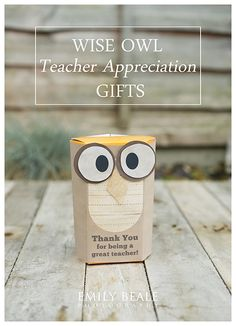 Wise Old Owl wrapping for Lindor chocolates! Thank You Teacher Gifts, Your Teacher, Teacher Appreciation Gifts, Lindor, End Of School Year, Wise Owl, Inspirational Gifts, Chocolates, Wrapping