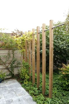 Pergola: wood and steel, modern style, stand alone solution ideal for wisteria