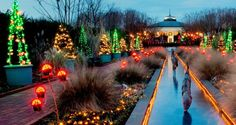 Holiday Fun in Charlotte | Charlotte NC Travel & Tourism