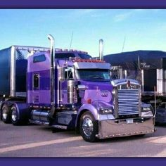 truckingworldwide2:Kenworth custom W900L
