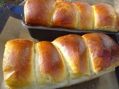 In case you are in search of the actual brioche recipe utilized in bakery, right here it's! As you have got definitely observed, the brioche … Brioche Kitchenaid, Kitchenaid Artisan, Croissants, Biscuit Dough Recipes, French Brioche, Donuts, Thermomix Desserts, Pizza, Snacks
