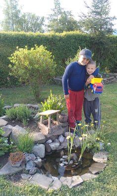 Lásky Plants, Flora, Plant, Planting