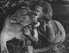Joy Adamson with Elsa the lioness (1956)
