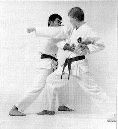 Shōtei uchi Yoko, Martial Arts, Combat Sport, Martial Art