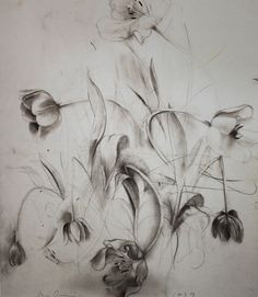 Jim Dine - still life - emerging studies