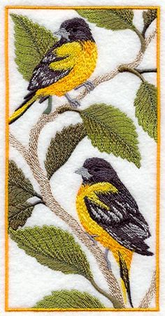 Baltimore Oriole Pan