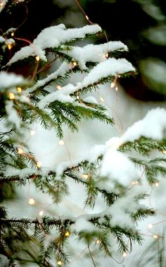 New Ideas For Christmas Wallpaper Backgrounds Winter Wonderland Xmas Christmas Mood, Noel Christmas, Merry Little Christmas, White Christmas Snow, Christmas Tumblr, Christmas Houses, Christmas Scenes, Christmas Is Coming, Christmas Wishes