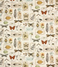 Wildlife fabric is an unusual botanical inspired fabric printed on 100% cotton. Suitable for curtains, blinds and cushions, it looks especially good as a feature roman blind. Depicting woodland flowers, butterflies and bird eggs, it's perfect for creating the Keepsake Garden design trend. Buy online or visit us in Cheltenham or Burford to view our full range of discounted fabrics.