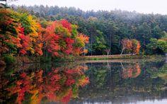 New Hampshire...Home! New Hampshire, My Favorite Color, Vermont, Amazing Places, Beautiful Places, Bridges, Dream Homes, Lakes, The Good Place