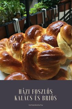 Foszlós kalács és briós készítése – Tortaiskola Plaited Bread Recipe, Bread Recipes, Cooking Recipes, Ring Cake, Hungarian Recipes, Hungarian Food, Brio, Dry Yeast, No Bake Desserts