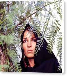 Talitha Getty Talitha Getty, Vogue Photo, Still Image, Marrakech, Style Icons, Palm, Fashion Photography, Instagram Images, Vintage Fashion