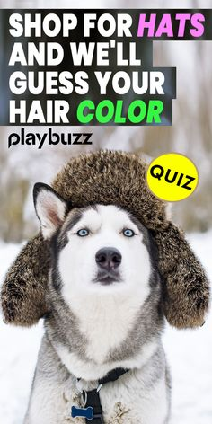 Fun Personality Quizzes, Personality Types, Empathy Test, Looney Tunes Funny, Fun Test, Color Test, Fun Quizzes, Playbuzz, Dance Moms