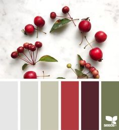 today's inspiration image for { fresh hues } is by . thank you, Elizabeth, for another incredible image share! Colour Pallette, Colour Schemes, Color Combos, Color Patterns, Design Seeds, Color Plan, Color Balance, Colour Board, Color Blending