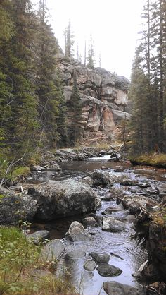 Hike to Cascade Falls in Grand Lake and Rocky Mountain National Park