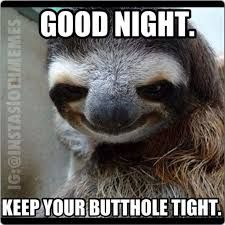 Image result for funny sloth memes