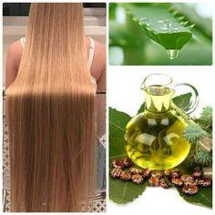 Truque caseiro que faz o cabelo crescer com babosa e óleo de rícino