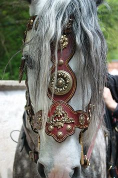 Beautiful, looks like a piece from GOT. Beautiful, looks like a piece from GOT. - Art Of Equitation Horse Armor, Horse Bridle, Horse Gear, Friesian Horse, Horse Saddles, Most Beautiful Animals, Beautiful Horses, Beautiful Beautiful, Pretty Horses