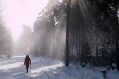 Nog even en we mogen weer. Met de caravan naar de sneeuw. In Mauterndorf dit keer. Oostenrijk dus. Al is deze foto in Duitsland gemaakt. #photography #travelphotography #traveller #canonnederland #canon_photos #fotocursus #fotoreis #travelblog #reizen #reisfotografie #travelwriter#fotoworkshop #willemlaros.nl #landschapsfotografie #visitaustria #fantastisch_oostenrijk #mauterndorf #wintercamping #vivakamperen #caravan