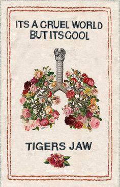 necpd:  It's a cruel world, but it's cool. // tigers jaw (◠‿◠✿) Charmer (2014) Insp.: x