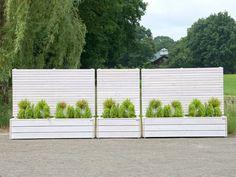 Pflanzkasten Holz mit Sichtschutz - Element Gruppe, Farbe: Transparent Natur Geölt