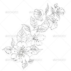 Sacura #GraphicRiver Sacura isolated over white. Vector illustration. Created: 8May13 GraphicsFilesIncluded: JPGImage #VectorEPS Layered: Yes MinimumAdobeCSVersion: CS Tags: art #artwork #asia #background #black #branch #cherry #china #design #draw #drawing #east #flora #floral #forest #illustration #ink #japan #japanese #line #love #pencil #petal #sakura #season #silhouette #stem #style #traditional #vector