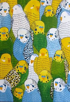 budgies all budged up together #budgies via #handmadecharlotte