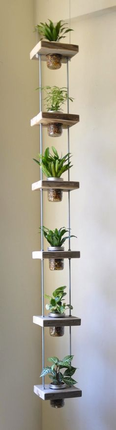 A vertical planter is the solution for gardeners who are short on space.