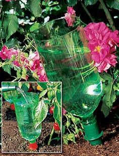 Recycled soda bottle waters your plants for you!