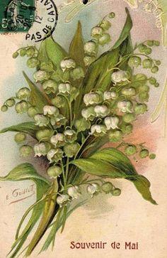Coutumes et traditions : brin de muguet du 1er mai, retour des beaux jours, plantation du mai et mois néfaste