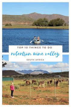 22 Best Family Travel - South Africa images   Travel advice