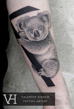 Valentin Hirsch, Koala @Courtney Baker Baxter