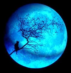#SICIS #BlueMoon #mood #rare #azul