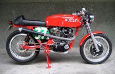 @Radical Ducati s.l. - 350 MAX