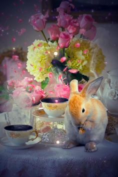 Good Morning Gif Funny, Good Morning Coffee Images, Good Morning Beautiful Gif, Good Morning Roses, Good Morning Greetings, Beautiful Love Pictures, Love You Images, Rainbow Wallpaper, Flower Wallpaper
